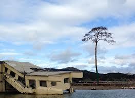 fukushima pino
