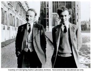 Crick e Watson cambridge