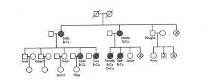 albero familiare brac
