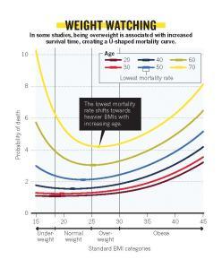 grossa grassa bugia grafico